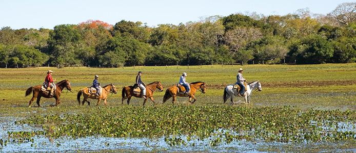 Pantanal7