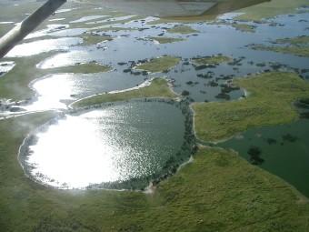 pantanal-air-view