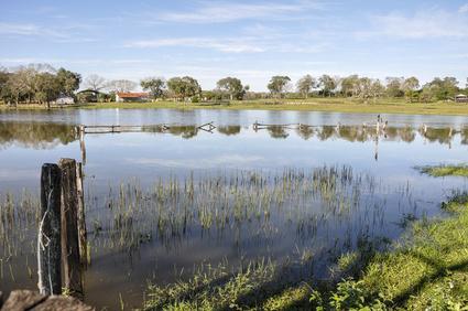 Pantanal, Mato Grosso, Brazil, flooded farm