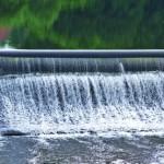 Wasserkraft sorgt im Pantanal für Konflikte