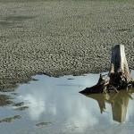 Westen des Pantanal leidet unter extremer Trockenheit