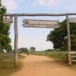 Die schönsten Orte im brasilianischen Pantanal