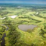 """Pantanalstudie: Forscher nehmen Artenvielfalt und """"Puls des Wassers"""" unter die Lupe"""