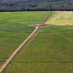 Netzwerk zur Erforschung der Agrogifte im Pantanal gegründet