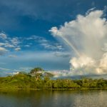 Prämien fürs Pantanal: Initativen verbinden Öko-Tourismus mit Naturschutz