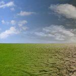 Weltwassertag: Umweltorganisationen zeigen Einzigartigkeit und Bedrohungen des Pantanals auf