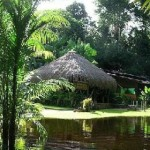 Cristalino-Jungle-Lodge0_280