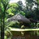 Cristalino-Jungle-Lodge – Alta Floresta – Mato Grosso