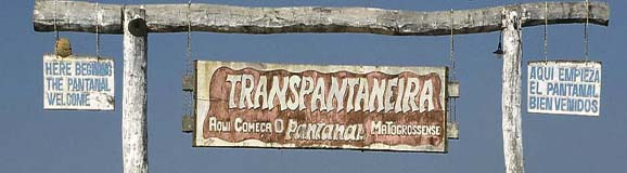 Transpantaneira